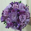 Purple Beauty Hand Held