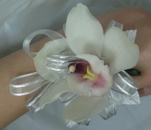 White Cymbid with silver ribbon 46