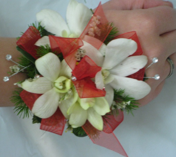 White dendrodium with red ribbon 64