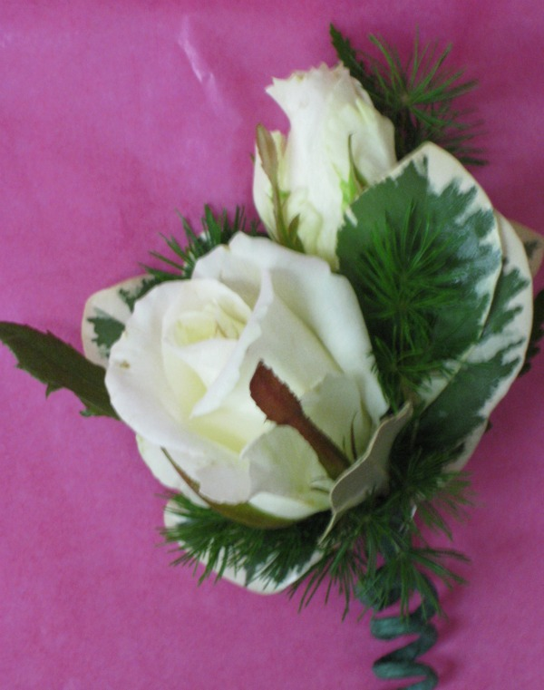white rose boutiniere with pitt 2